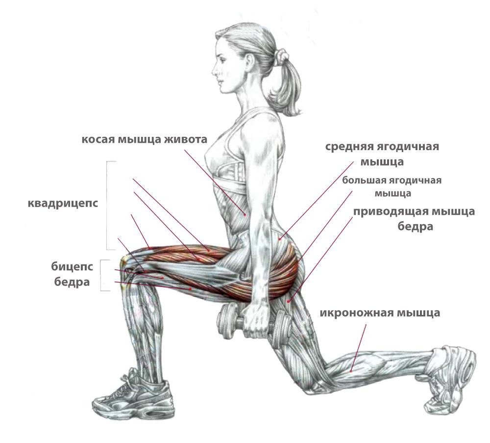 картинки с упражнениями для мышц ног меня