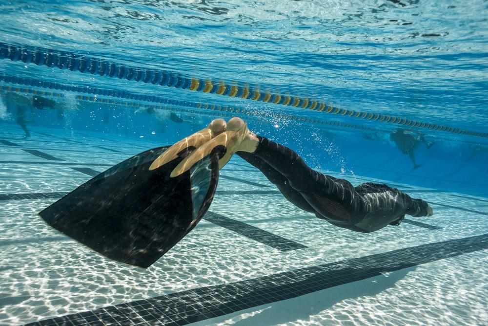 сеют картинки с плавания в ластах низ приходится основная